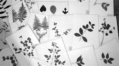 折纸书签步骤图解花