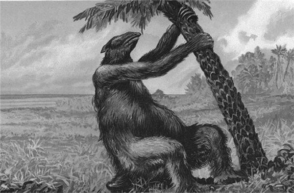 摘要: 南北美洲生物大迁徙,地懒来到得克萨斯州的新家。 因巴拿马地峡的形成,北美洲及南美洲的动物群开始互相迁徙交换。一个激进的新假说认为:南北美洲间大陆桥的形成时间,比科学家所认为的要早数百万 ...  南北美洲生物大迁徙,地懒来到得克萨斯州的新家。 因巴拿马地峡的形成,北美洲及南美洲的动物群开始互相迁徙交换。一个激进的新假说认为:南北美洲间大陆桥的形成时间,比科学家所认为的要早数百万年。 300万年前,一条连接南北美洲大陆的狭长大陆桥出现。自那时起,无数南美洲的生物在经过了数千万年的隔绝后,通过这