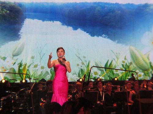 名家名歌演唱会 陈思思倾情献唱 中国梦图片