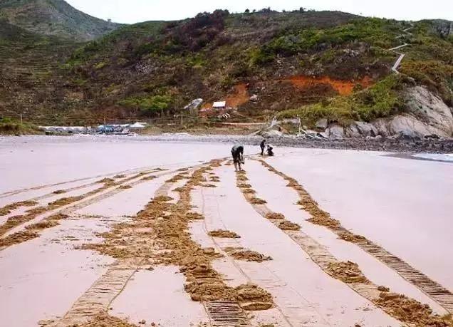 只要心中<em>有海</em>哪里都有沙滩 盘点浙江省10大小