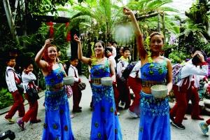 傣族姑娘_的傣族姑娘手捧银碗,用树枝将象征幸福和吉祥的福水